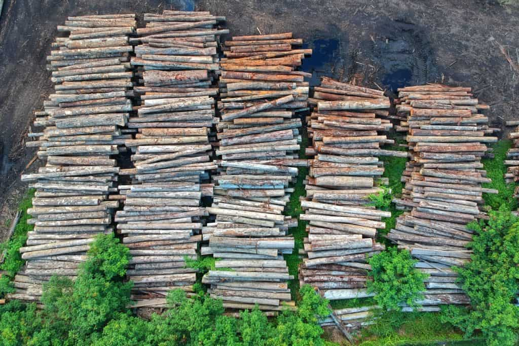 What is Lumber And Where It Is Used?
