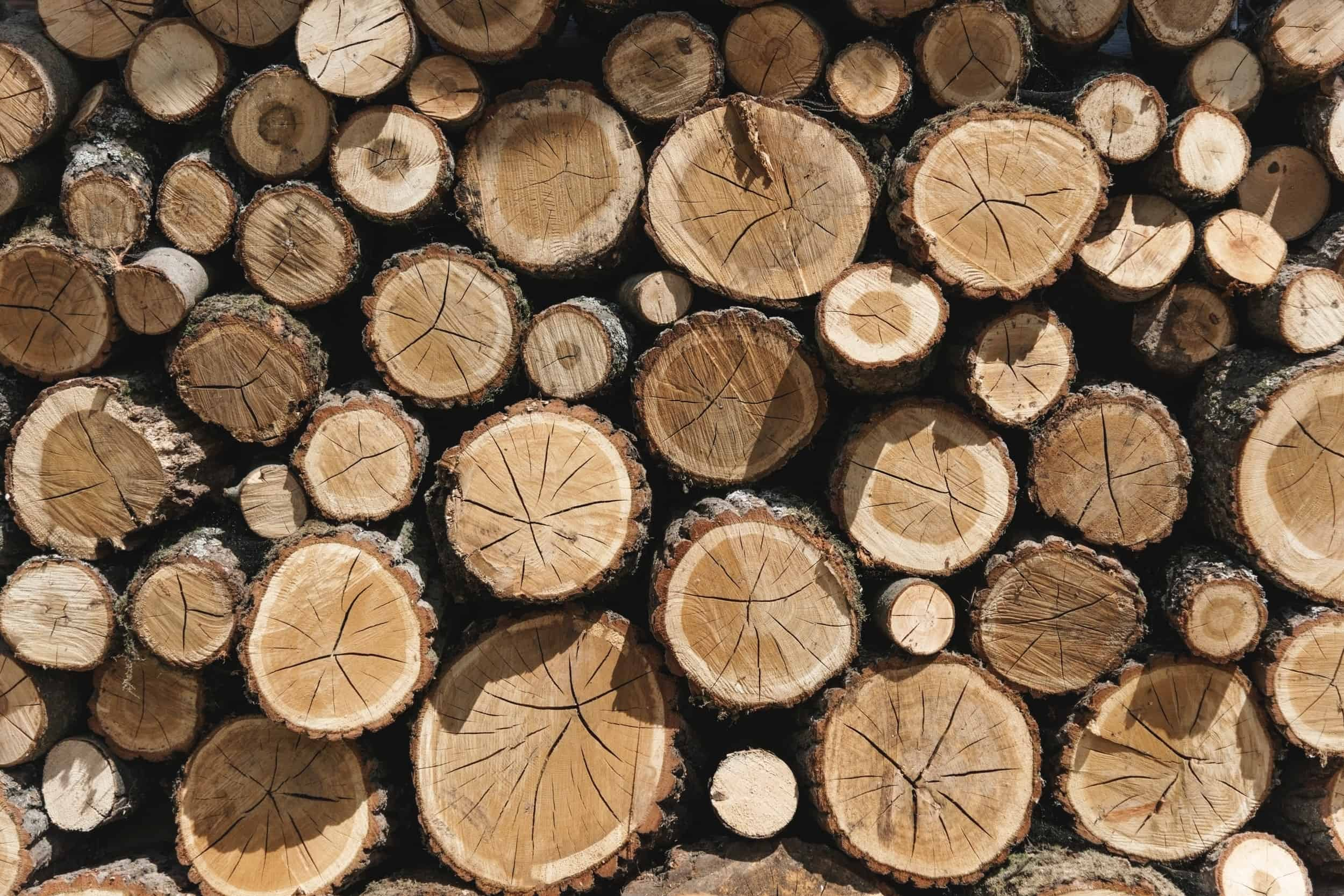 Types of Lumber Wood & Their Uses